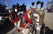 Horse and rider dressed up during the Kano Durbar Fantasia..The Durbar Fantasia, is the moment where The Husa residents of Kano wear traditional dress, their local leaders and chiefs mount horses, and together with their militias display allegiance and homage to their leader, the Emir of Kano. This takes place after Ramadan. The Emir is Kano's State official political and economic feudal leader, everyone seeks to be in his pleasure, otherwise they reap the consequences..Kano is the largest Muslim Husa city, under the feudal, political and economic rule of the Emir. Kano and the other eleven northern states are under Islamic Sharia Law which is enforced by official state apparatus including military and police, Islamic schools and education, plus various volunteer Militia groups supported financially and politically by the Emir and other business and political bodies. 70% of the population live below the poverty line. Kano, Kano State, Northern Nigeria, Africa