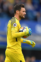 Tottenham Hotspur goalkeeper Hugo Lloris