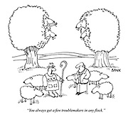 """""""You always get a few troublemakers in any flock."""""""