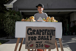 February 17, 2018 - Thousand Oaks, California, USA - Boy with homemade grapefruit stall on driveway (Credit Image: © Ian Spanier/Image Source via ZUMA Press)