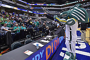 April 4, 2016; Indianapolis, Ind.; The UAA mascot, Spirit, leads the UAA fans in cheers before the NCAA Division II Women's Basketball National Championship game at Bankers Life Fieldhouse between UAA and Lubbock Christian.