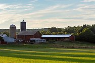Smiley Farm scene in the Town of Wallkill, N.Y., on Aug. 1, 2020.