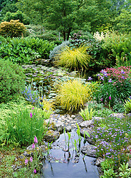 General view of the upper pond at Glen Chantry. Planting includes Sisyrinchium idahoense, Carex elata 'Aurea', Corydalis, Iris sibirica 'Placid Waters'
