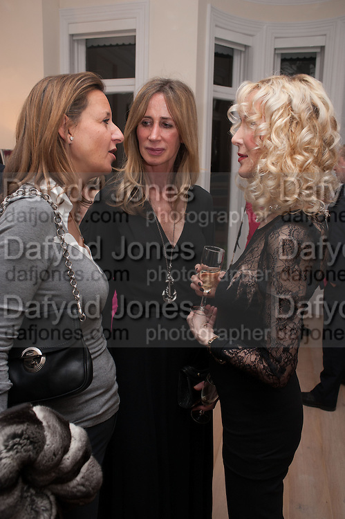 CINDY LASS; MICHELLE YOUNG; BASIA BRIGGS, Drinks party given by Basia and Richard Briggs,  Chelsea. London. SW3. 13 February 2014.