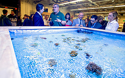 May 2, 2017 - Huntington Beach, California, USA - Gregory Paul Gardiner, center, shows off his student-built coral fragging tank to county superintendent of school Dr. Al Mija?res after he surprised Gardiner with a a 2018 Teacher of the Year award from the Orange County Department of Education in Huntington Beach, California, on Tuesday, May 2, 2017. ..Gardiner, a high school biology teacher at Edison High School, is one of six teachers who were surprised with the honor by county superintendent of school Dr. Al Mija?res. ..(Photo by Jeff Gritchen, Orange County Register/SCNG) (Credit Image: © Jeff Gritchen, Jeff Gritchen/The Orange County Register via ZUMA Wire)