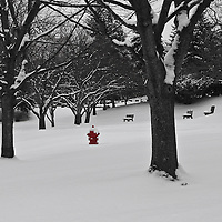 """Little Red"" 2 SC<br />