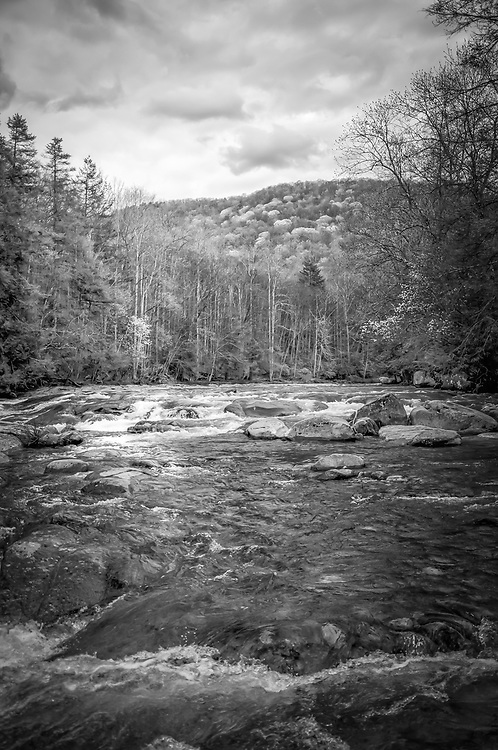 This photo was captured just a Spring began to visit the Williams River.  This river is a fly fishermanís dream and is regarded as one of the five best trout fishing streams in West Virginia.  The Williams runs 33 miles and spans two counties, Pocahontas and Webster before it empties into the Gauley.