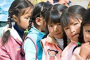El Alto primary school. Vitamin D distribution.