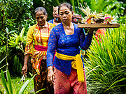 """08 AUGUST 2017 - UBUD, BALI, INDONESIA: Women walk through their family compound during a ceremony to honor a family temple in Ubud, Bali. Balinese Hindus have a 210 day calender and every almost every family compound on Bali has a family temple. Once a year (or every 210 days) families celebrate the """"birthday"""" of their temple with a ceremony.     PHOTO BY JACK KURTZ"""
