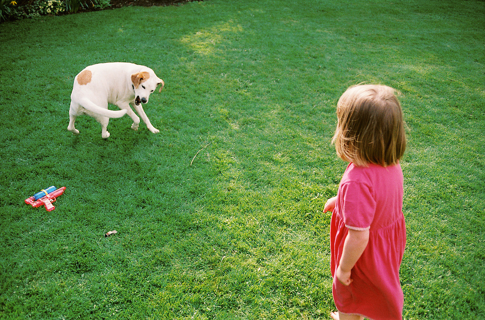 A dog chases its tail as a girl in a pink dress looks on. Toys are scattered in the grass.