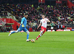 November 13, 2017 - Gdansk, Poland - Jose de Jesus Corona and Jakub Swierczok during the international friendly soccer match between Poland and Mexico at the Energa Stadium in Gdansk, Poland on 13 November 2017  (Credit Image: © Mateusz Wlodarczyk/NurPhoto via ZUMA Press)