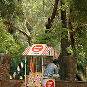 An Ice Cream vendor sitting on his cart and enjoying his own ice cream waiting for passing customers on Lodi road near Lodi Garden in New Delhi, June 2006