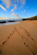 Sunrise, Sandy Beach Park, Hawaii Kai, Oahu, Hawaii