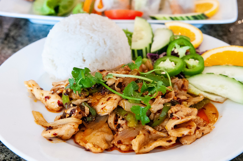 Savory lunch at the Grilled Ginger Vietnamese Restaurant in Fayetteville, North Carolina on Monday, August 16, 2021. Copyright 2021 Jason Barnette