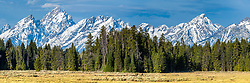 Two grizzlies are only a tiny part of a giant panorama of the Grand Teton Range.    This is a giant file that can be printed twelve foot wide. There are also some sandhill cranes in the meadow as well. <br /> <br /> For large panoramas contact me directly.