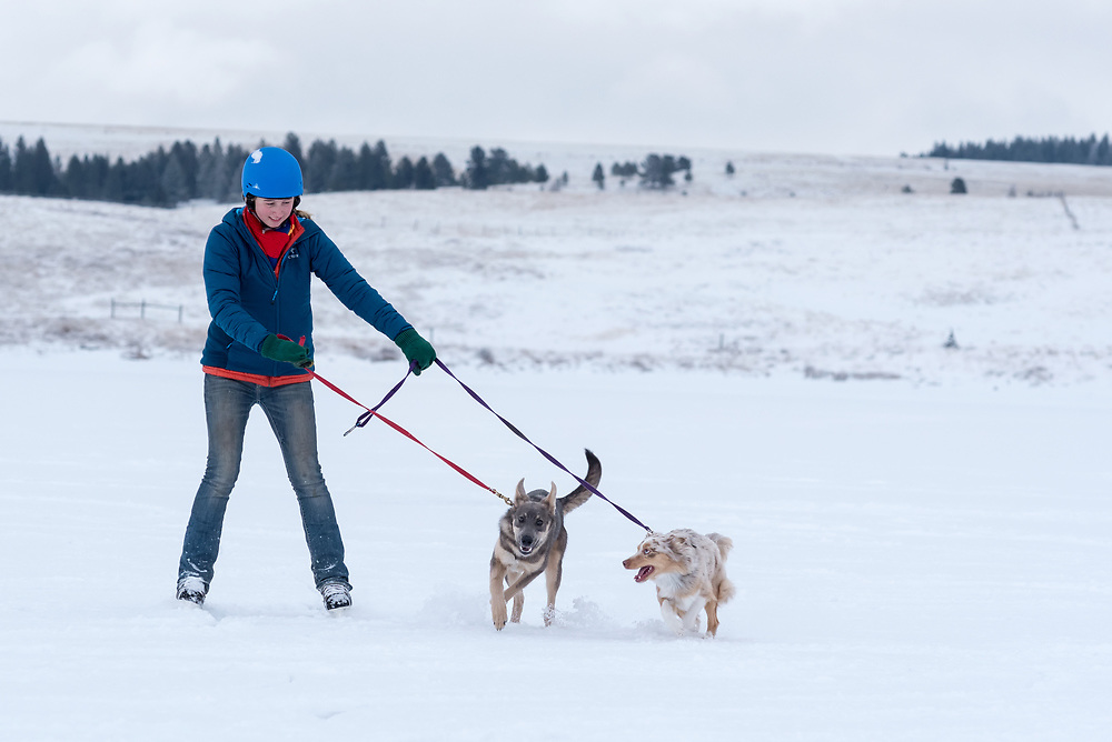 Young woman on ice skates being pulled by dogs on Kinney Lake, Oregon.