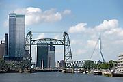 Uitzicht op de Hef en de Erasmusbrug, Rotterdam, Zuid-Holland - View on De Hef and the Erasmusbrug, Rotterdam, Netherlands