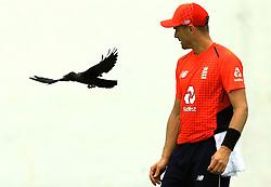 October 5, 2018 - Colombo, Sri Lanka - England cricketer Chris Woakes looks at a crow  during the practice cricket match between Sri Lanka Board XI and England at P Sar Oval cricket ground, Colombo, Sri Lanka. 10-05-2018  (Credit Image: © Tharaka Basnayaka/NurPhoto/ZUMA Press)