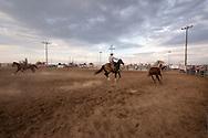 Will James Roundup, Ranch Rodeo, Wild Horse Roping, Chris Hatch, Hardin, Montana.