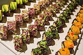 Stock | Vegetarian Food Festival - 2013