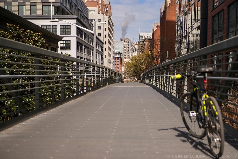 Marion Street Ferry Walkway, Downtown (April 4, 2020).