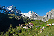 See the Breithorn (3780 m / 12,402 ft) from trails above Berghotel Obersteinberg, in Upper Lauterbrunnen Valley, Switzerland, the Alps, Europe. The area offers tremendous views of waterfalls and peaks. Obersteinberg is a 2-hour walk from Stechelberg, or 4 hours from Mürren, in one of the world's most spectacular glaciated valleys. The Swiss Alps Jungfrau-Aletsch region is honored as a UNESCO World Heritage Site.