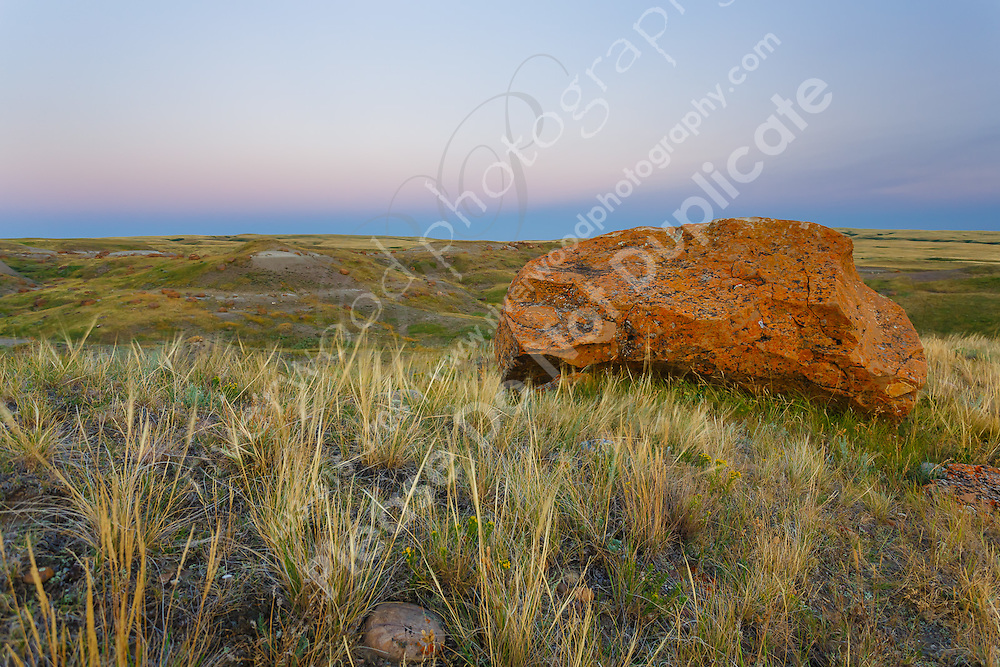 """Images from a trip to Red Rock Coulee in Southwestern Alberta.<br /> <br /> The area is home to hundreds of """"spherical concretions"""", which are huge red rocks that have eroded much more slowly than the surrounding soil. They are similar to hoodoos, which are more commonly found in the badlands of central Alberta.<br /> <br /> Red Rock Coulee is one of those extremely interesting places that is unlike anywhere else that you'll ever visit.<br /> <br /> ©2014, Sean Phillips<br /> http://www.RiverwoodPhotography.com"""