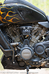Danger Dan Hardick's 2-week old Harley-Davidson Pan-America adventure bike on a trail just outside Red River, NM, USA. Sunday, May 30, 2021. Photography ©2021 Michael Lichter.