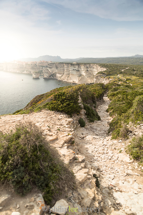 View of sea and coastline with limestone cliffs at sunset, Bonifacio, Corsica, France