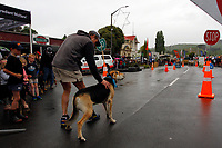 Hunterville, New Zealand - October 27, 2018 - A shepherd prepares to set his dog off on a course to test its skills in listening to instructions. The event was part of the annual Shemozzle festival in this New Zealand rural town that sees shepherds and their dogs tackle an obstacle race that includes drinking curdled milk and carrying bulls testicles several metres in the mouth. Picture: Giordano Stolley
