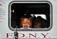 Memorial ceremony @ Engine 279. Brooklyn, New York. USA. Sep 11, 2011.