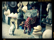 Hanoian woman reads a newspaper while her dog sits loyally by her side, Hanoi, Vietnam, Southeast Asia