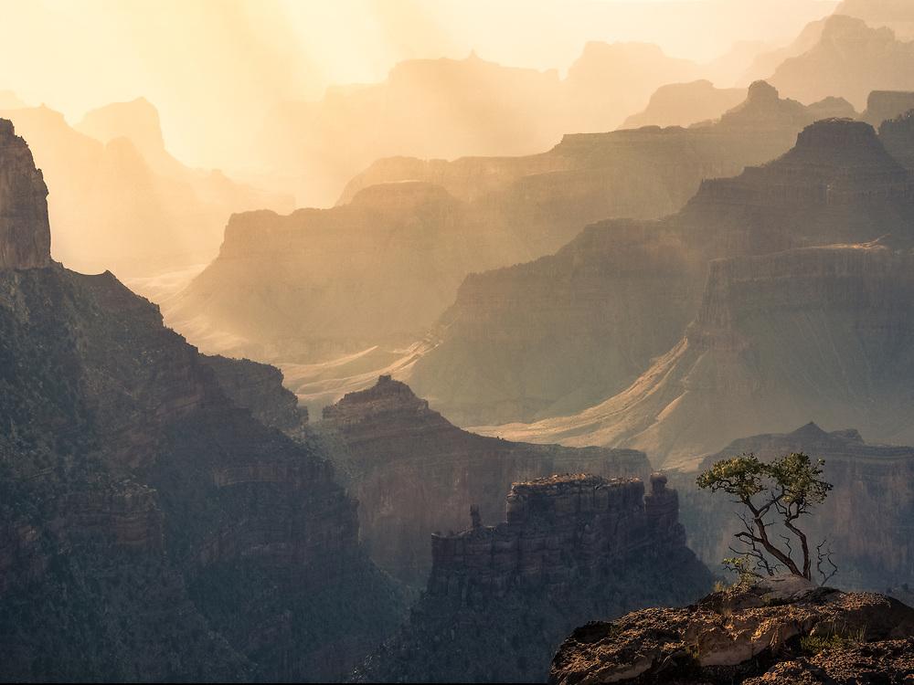 Grand Canyon, July 2016.