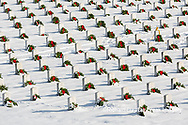 65095-03008 Wreaths on graves in winter Jefferson Barracks National Cemetery St. Louis,  MO