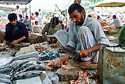 Fishmongers gutting fish ready to sell in the fish markets, Islamabad, Pakistan