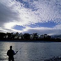 FISHING, Rob Hart (MR) fishing in Yellowstone River, Paradise Valley, Montana