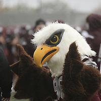 Football: Augsburg University Auggies vs. St. Olaf College Oles