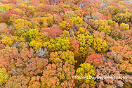 63876-02416 Aerial view of fall color trees Stephen A. Forbes State Park Marion Co. IL