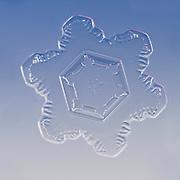 Snow Crystal, Snowflake magnified under microscope,  Lillehammer, Norway | Schneeflocke | Schneekristall | Fotografie