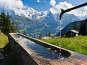 """A water trough at Chuebodmi (in Lauterbrunnen municipality) reflects Mönch (Monk) and Jungfrau (Virgin, 13,600 feet) in the Berner Oberland, Switzerland, the Alps, Europe. The Bernese Highlands are the upper part of Bern Canton. UNESCO lists """"Swiss Alps Jungfrau-Aletsch"""" as a World Heritage Area (2001, 2007)."""