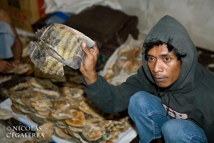Pecheurs et poissons salés a Bonebaru sur l'ile  Banggai dans les Sulawesis en Indonésie