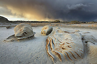 """Approaching storm at the """"Egg Factory"""" sandstone formations, Bisti Badlands, Bisti/De-Na-Zin Wilderness, New Mexico"""