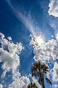 Cloudscape with sun behind clouds and Palm Trees on the Gulf of Mexico - Caribbean Blue