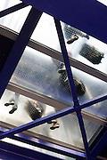 Through a transparent floor passengers await a lift to arrive at Heathrow Airport's Terminal 5 'Heathrow Express' station