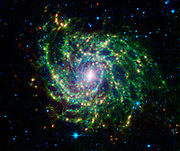 The galaxy IC 342 presents its delicate pattern of dust in this image from NASA's Spitzer Space Telescope.