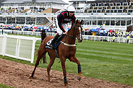 Song  for Someone and jockey Aiden Coleman head for the start of the 2.20pm The Doom Bar Anniversary 4YO Juvenile Hurdle (Grade 1) 2m 1f during the Grand National Festival Week at Aintree, Liverpool, United Kingdom on 4 April 2019.