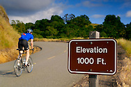 Bicycle rider going uphill on road past elevation marker sign, Mount Diablo State Park, California