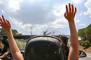 Road trip fun in an open roof convertible car with hair blowing in the wind as seen from the back seat model release available