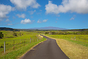 Mountain road, Hamakua Coast, Mauna Kea in Background, Big Island of Hawaii
