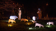 Lighted statues of shepherds and their sheep at the Way of Lights holiday light display at the National Shrine of Our Lady of the Snows in Belleville on December 3, 2019. This is the 50th anniversary of the annual light display, which runs from 5 pm to 9 pm through December 31.<br />Photo by Tim Vizer